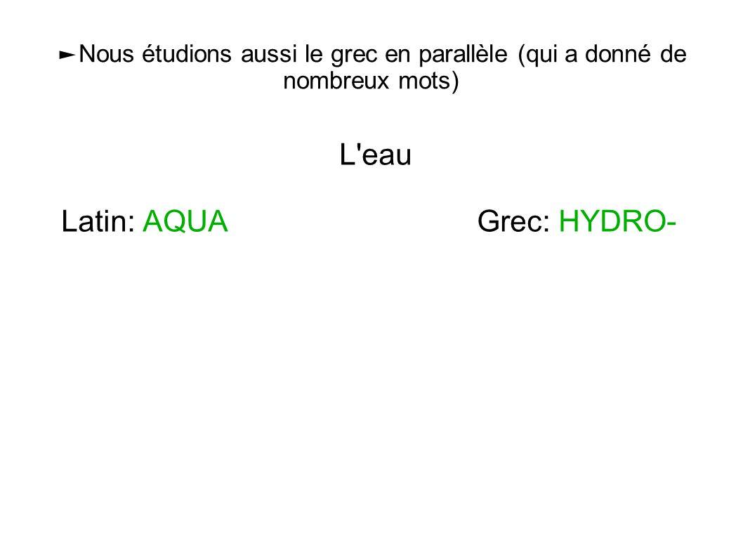►Nous étudions aussi le grec en parallèle (qui a donné de nombreux mots) L'eau Latin: AQUA Grec: HYDRO-