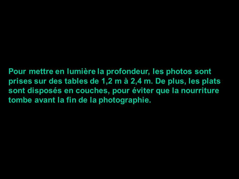 Pour mettre en lumière la profondeur, les photos sont prises sur des tables de 1,2 m à 2,4 m.