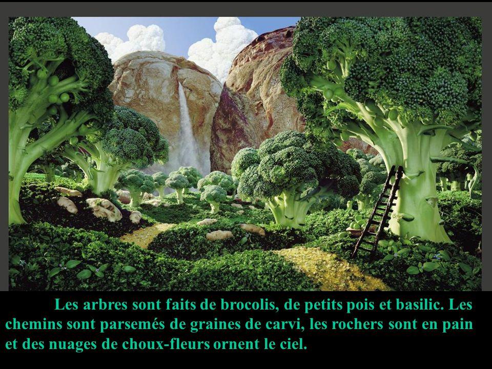 Les arbres sont faits de brocolis, de petits pois et basilic.