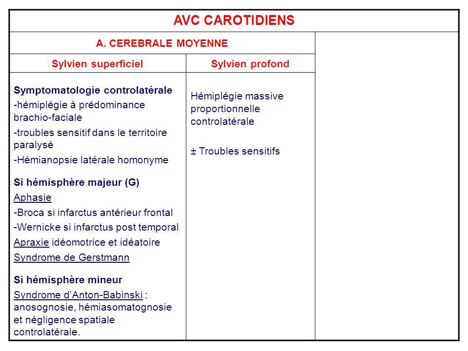 AVC CAROTIDIENS A. CEREBRALE MOYENNE Sylvien superficielSylvien profond Symptomatologie controlatérale -hémiplégie à prédominance brachio-faciale -tro