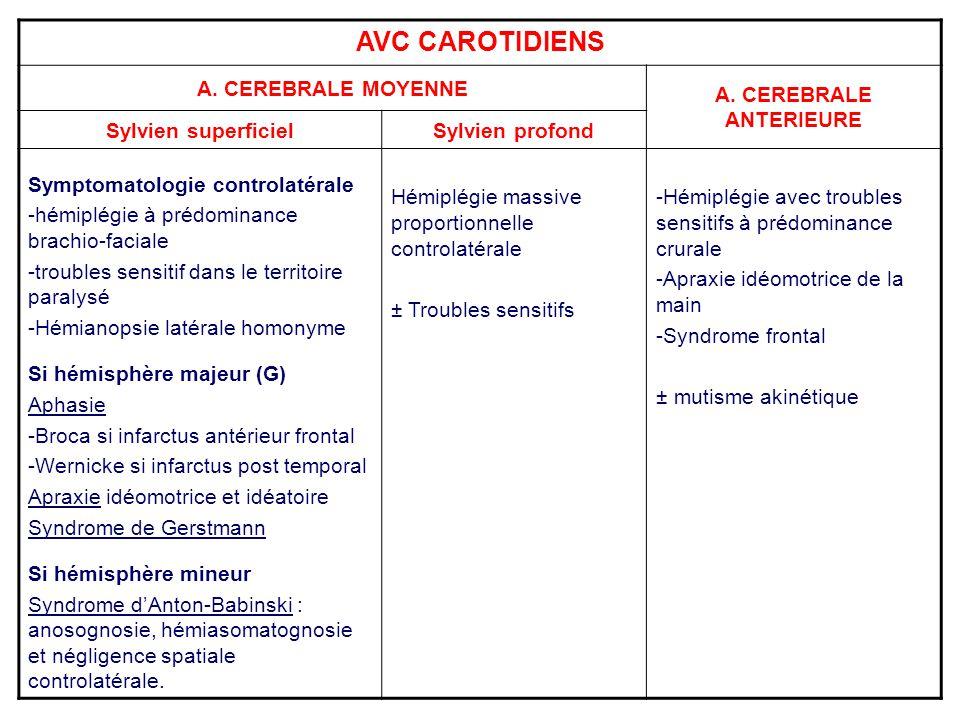 AVC CAROTIDIENS A. CEREBRALE MOYENNE A. CEREBRALE ANTERIEURE Sylvien superficielSylvien profond Symptomatologie controlatérale -hémiplégie à prédomina