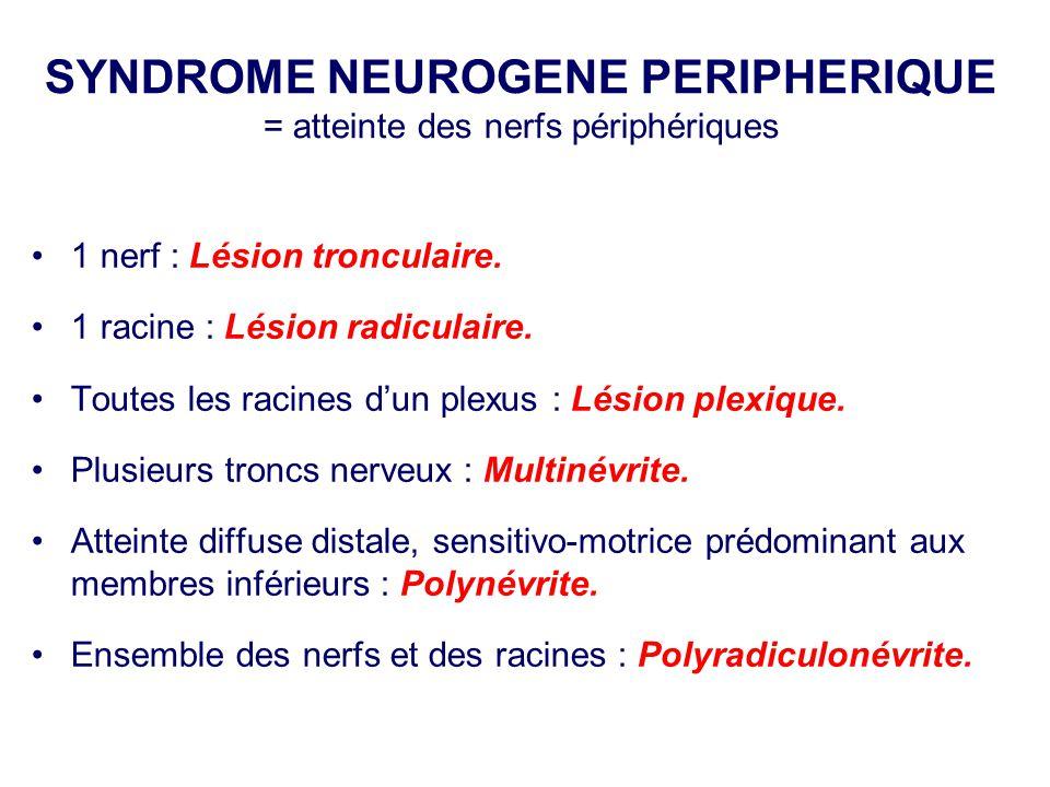 SYNDROME NEUROGENE PERIPHERIQUE = atteinte des nerfs périphériques •1 nerf : Lésion tronculaire. •1 racine : Lésion radiculaire. •Toutes les racines d