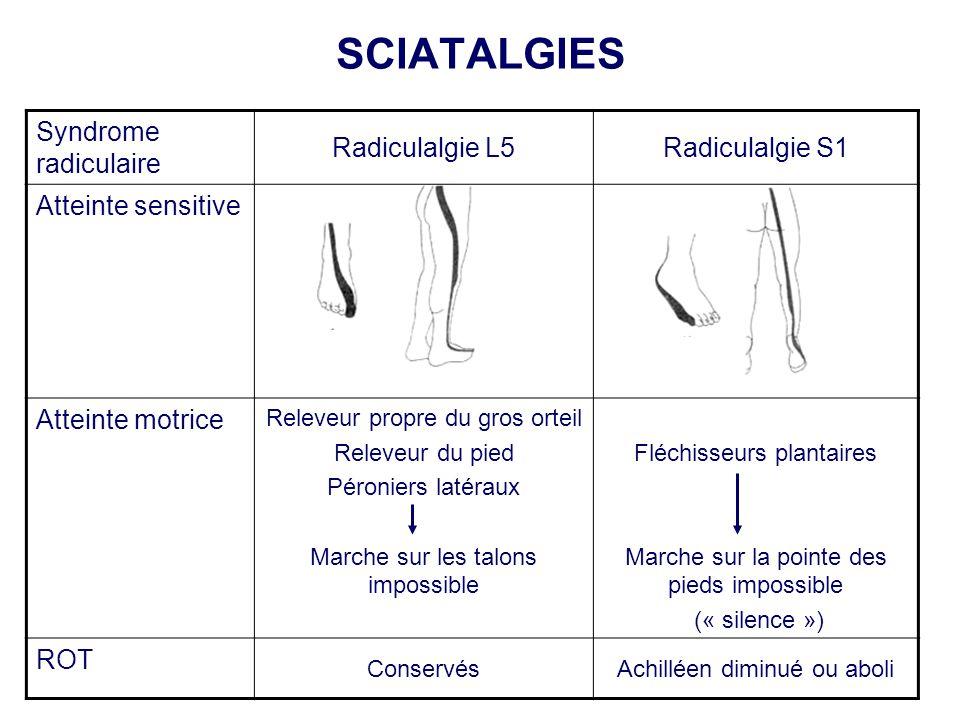 SCIATALGIES Syndrome radiculaire Radiculalgie L5Radiculalgie S1 Atteinte sensitive Atteinte motrice Releveur propre du gros orteil Releveur du pied Pé