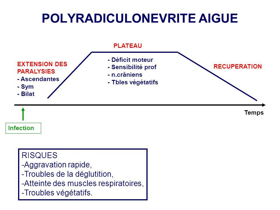 POLYRADICULONEVRITE AIGUE EXTENSION DES PARALYSIES - Ascendantes - Sym - Bilat - Déficit moteur - Sensibilité prof - n.crâniens - Tbles végétatifs REC