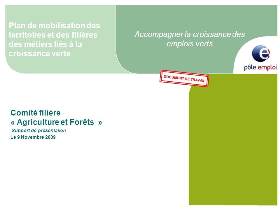 Accompagner la croissance des emplois verts Comité filière « Agriculture et Forêts » Support de présentation Le 9 Novembre 2009 Plan de mobilisation d