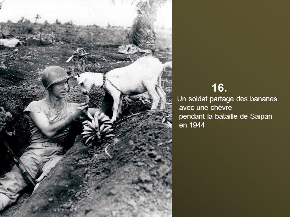 15. Publicité pour Atabrine, le médicament anti-paludisme à Papua en Nouvelle-Guinée durant la Seconde Guerre mondiale « Ces hommes n'ont pas bu leur