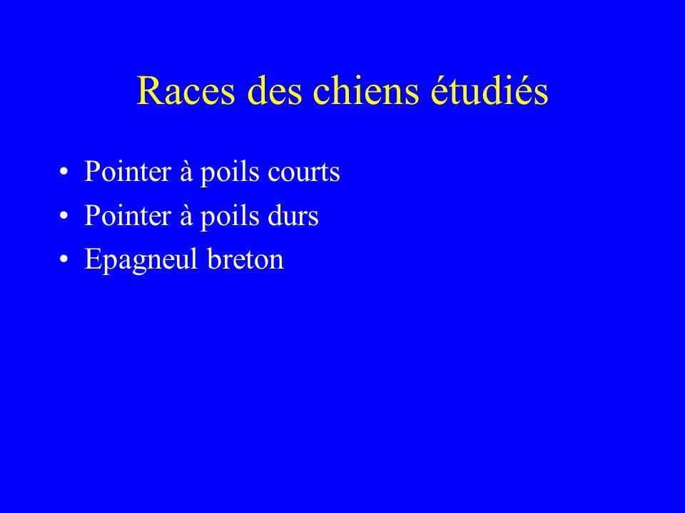 Races des chiens étudiés •Pointer à poils courts •Pointer à poils durs •Epagneul breton