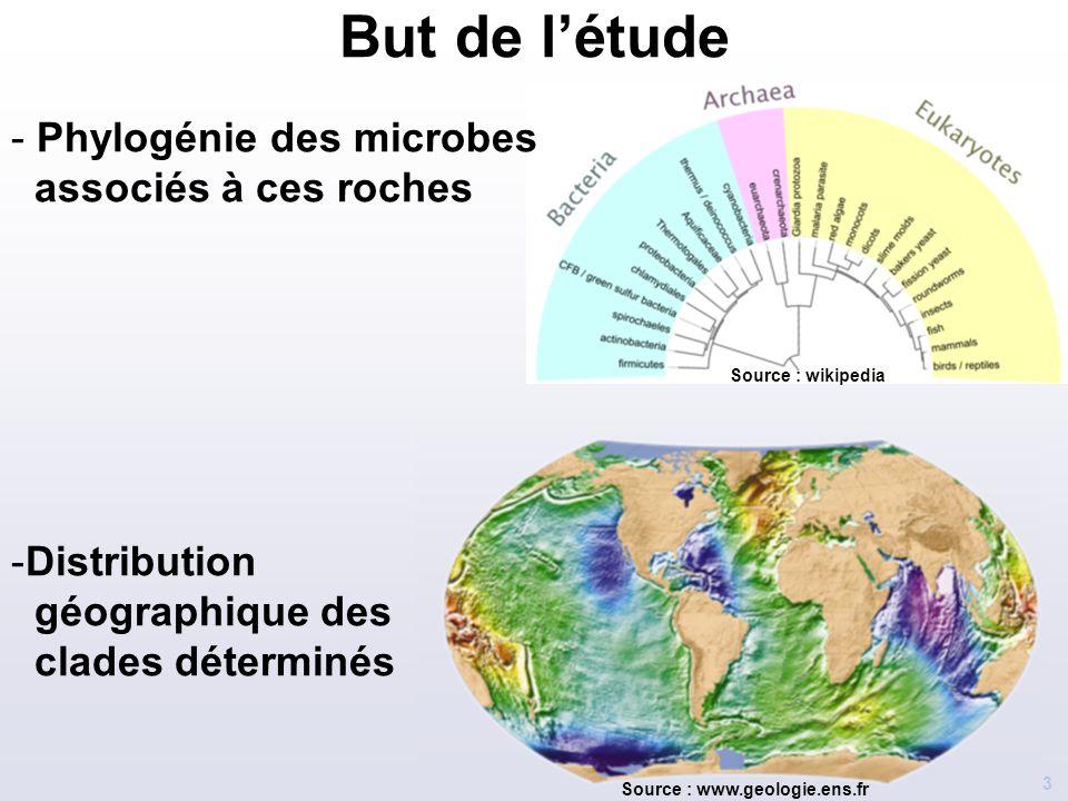 But de l'étude Source : wikipedia - Phylogénie des microbes associés à ces roches -Distribution géographique des clades déterminés 3 Source : www.geol