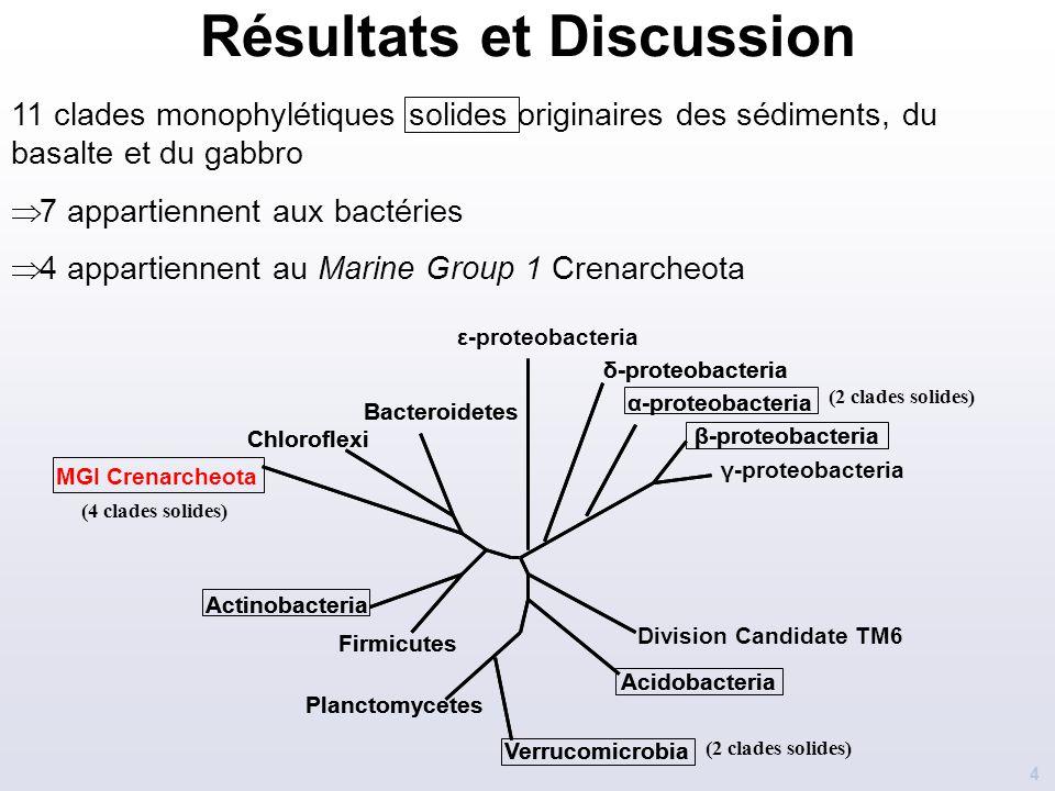 Résultats et Discussion 4 11 clades monophylétiques solides originaires des sédiments, du basalte et du gabbro  7 appartiennent aux bactéries  4 app
