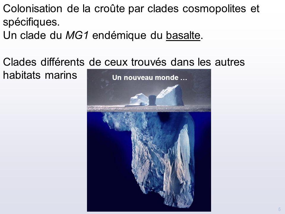 5 Colonisation de la croûte par clades cosmopolites et spécifiques. Un clade du MG1 endémique du basalte. Clades différents de ceux trouvés dans les a