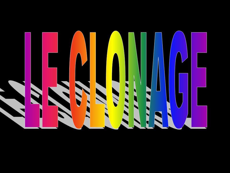 Par Lia Bukkfalvi et Pascal Defoy École La Dauversière, Montréal, juin 2000 Validation du contenu et révision linguistique: Karine LefevbreKarine Lefevbre  Science animée, 2000 Cliquez ici pour commencer