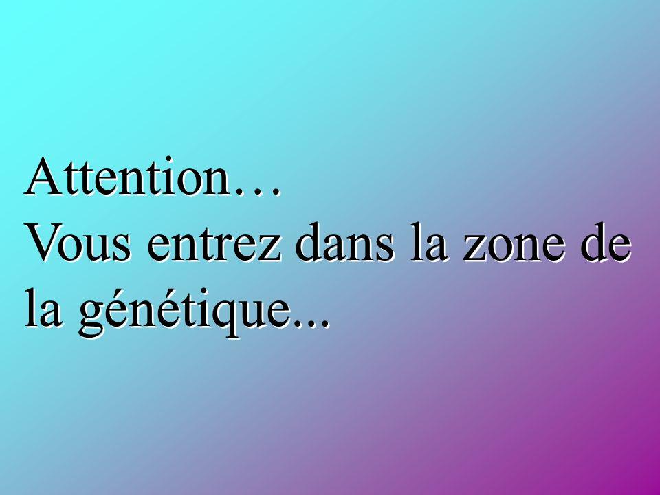Attention… Vous entrez dans la zone de la génétique...