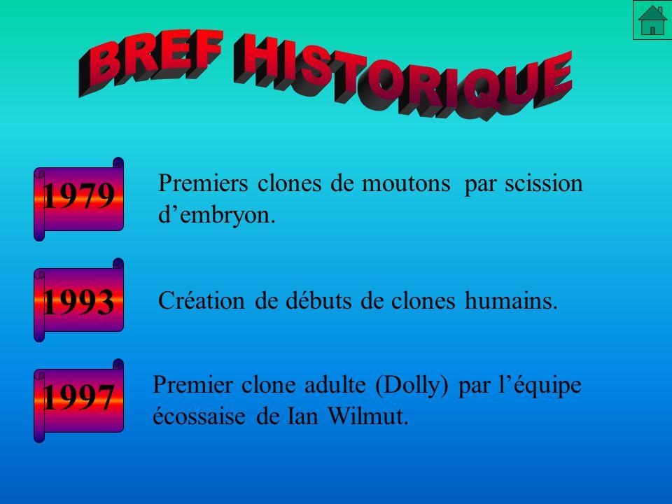 Depuis 1997, elle est la plus fameuse brebis au monde: le premier clone d'un mammifère adulte.