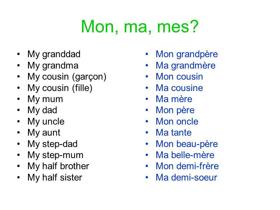 Mon, ma, mes? •My granddad •My grandma •My cousin (garçon) •My cousin (fille) •My mum •My dad •My uncle •My aunt •My step-dad •My step-mum •My half br