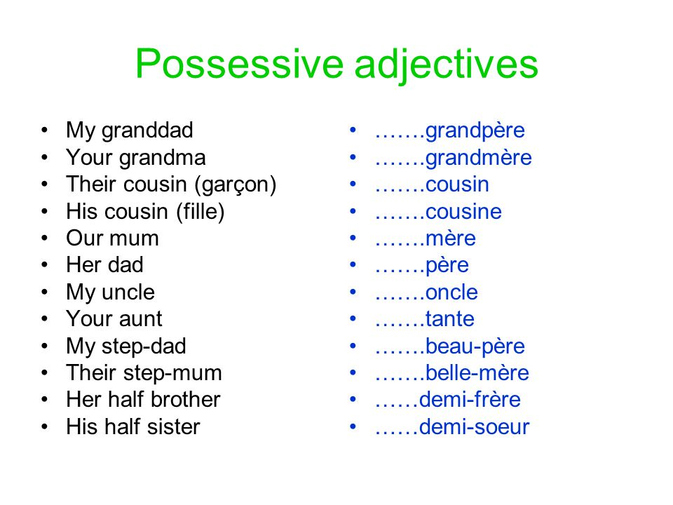 Possessive adjectives •My granddad •Your grandma •Their cousin (garçon) •His cousin (fille) •Our mum •Her dad •My uncle •Your aunt •My step-dad •Their