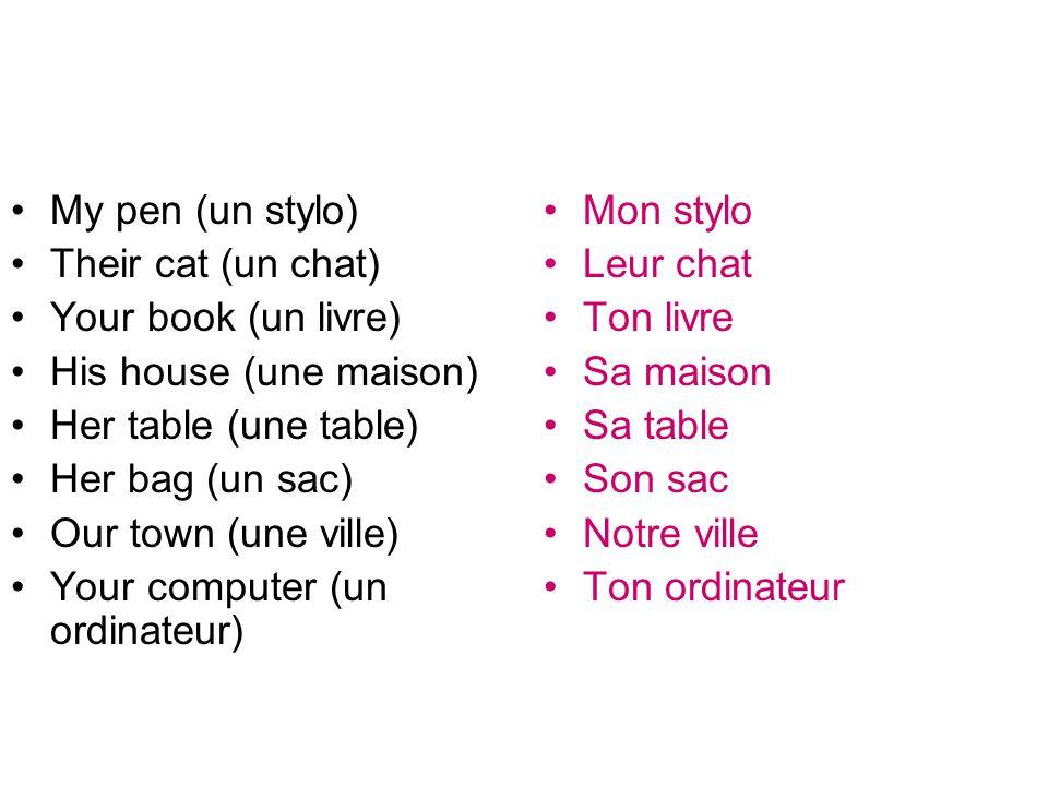 •My pen (un stylo) •Their cat (un chat) •Your book (un livre) •His house (une maison) •Her table (une table) •Her bag (un sac) •Our town (une ville) •