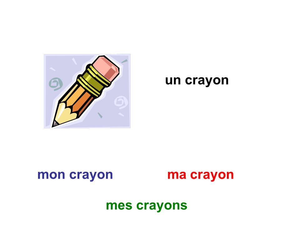un crayon mon crayon ma crayon mes crayons