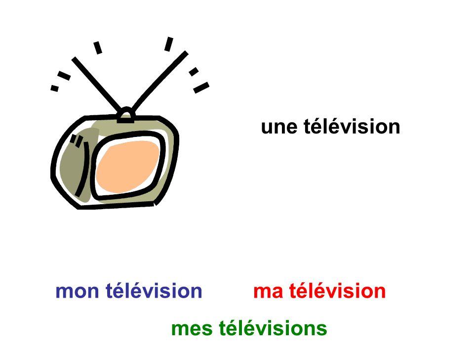 une télévision mon télévision ma télévision mes télévisions