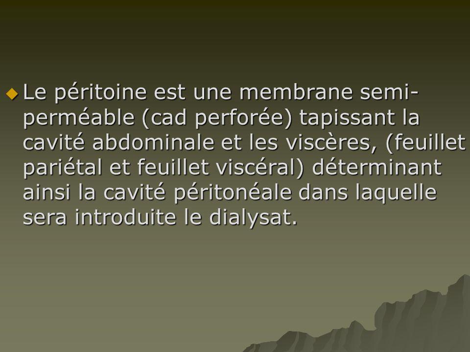 LLLLe péritoine est une membrane semi- perméable (cad perforée) tapissant la cavité abdominale et les viscères, (feuillet pariétal et feuillet vis