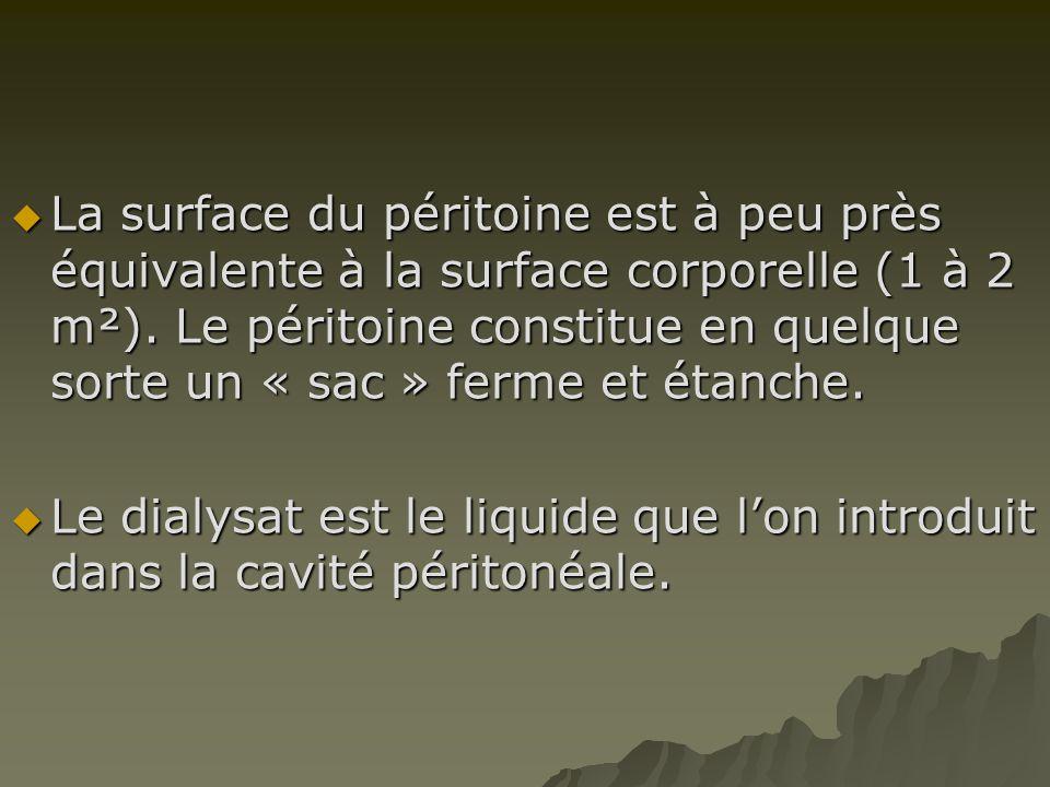 LLLLa surface du péritoine est à peu près équivalente à la surface corporelle (1 à 2 m²). Le péritoine constitue en quelque sorte un « sac » ferme
