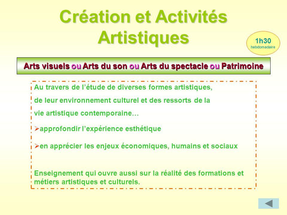 Création et Activités Artistiques 1h30 hebdomadaire Arts visuels ou Arts du son ou Arts du spectacle ou Patrimoine Au travers de l'étude de diverses f