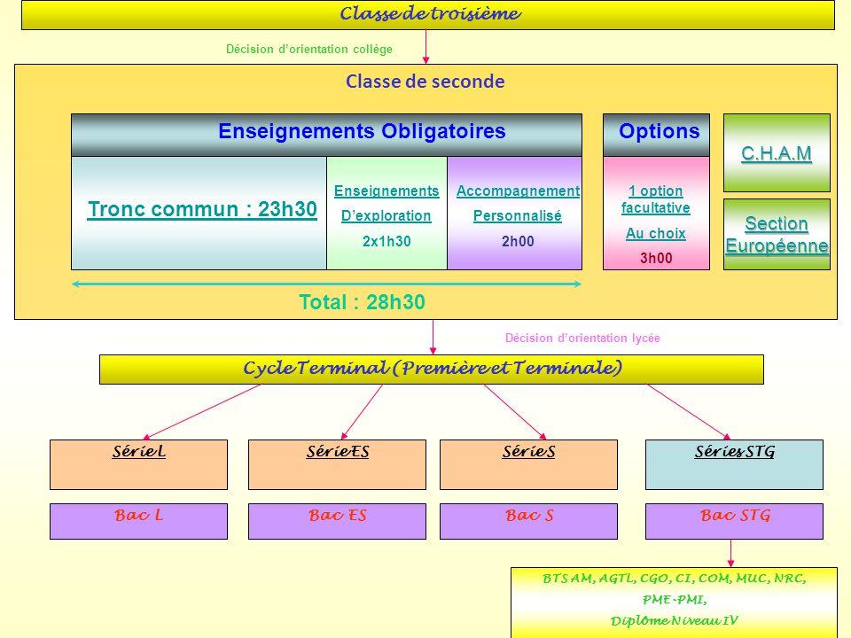 Classe de troisième Classe de seconde Série L Série ESSérie S Séries STG BTS AM, AGTL, CGO, CI, COM, MUC, NRC, PME-PMI, Diplôme Niveau IV Bac LBac ESB