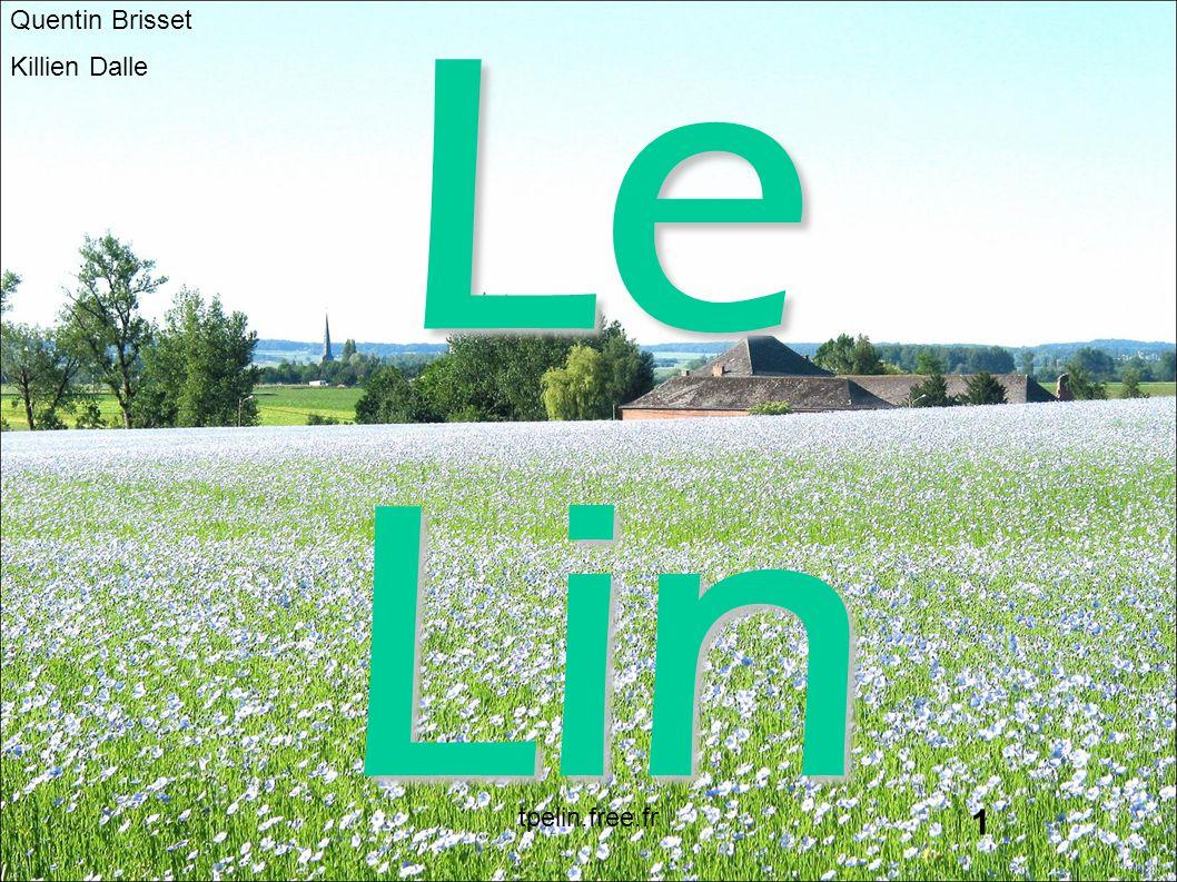 Quentin Brisset Killien Dalle Le Lin 1 tpelin.free.fr
