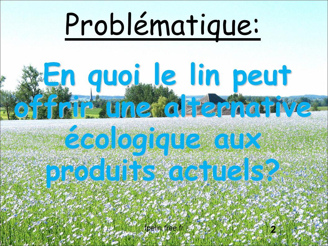 Problématique: En quoi le lin peut offrir une alternative écologique aux produits actuels? 2 tpelin.free.fr