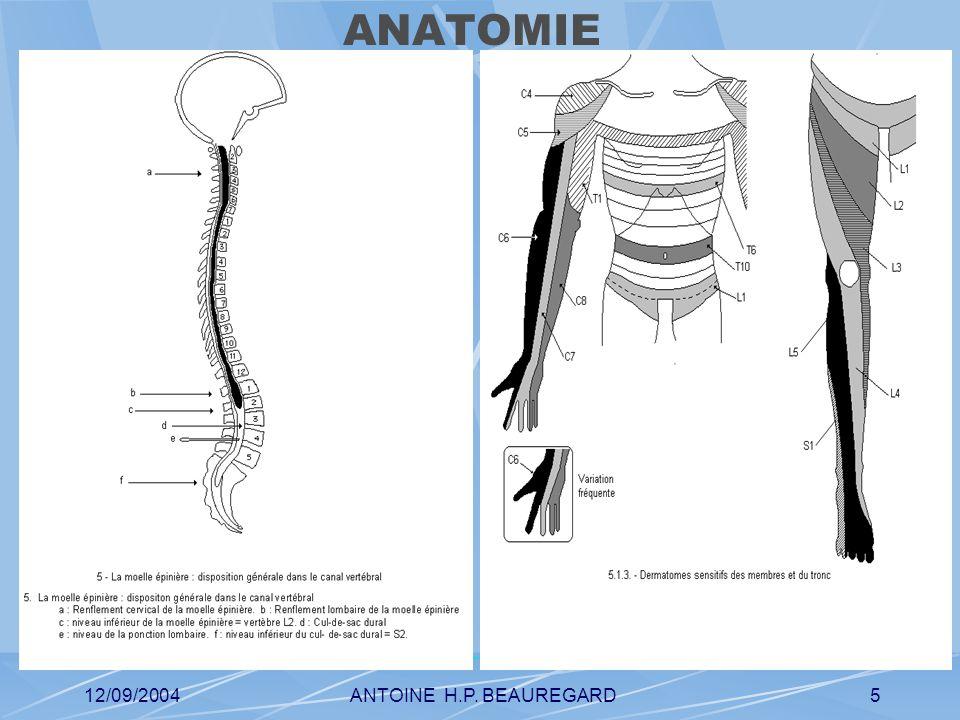 12/09/2004ANTOINE H.P. BEAUREGARD5 ANATOMIE