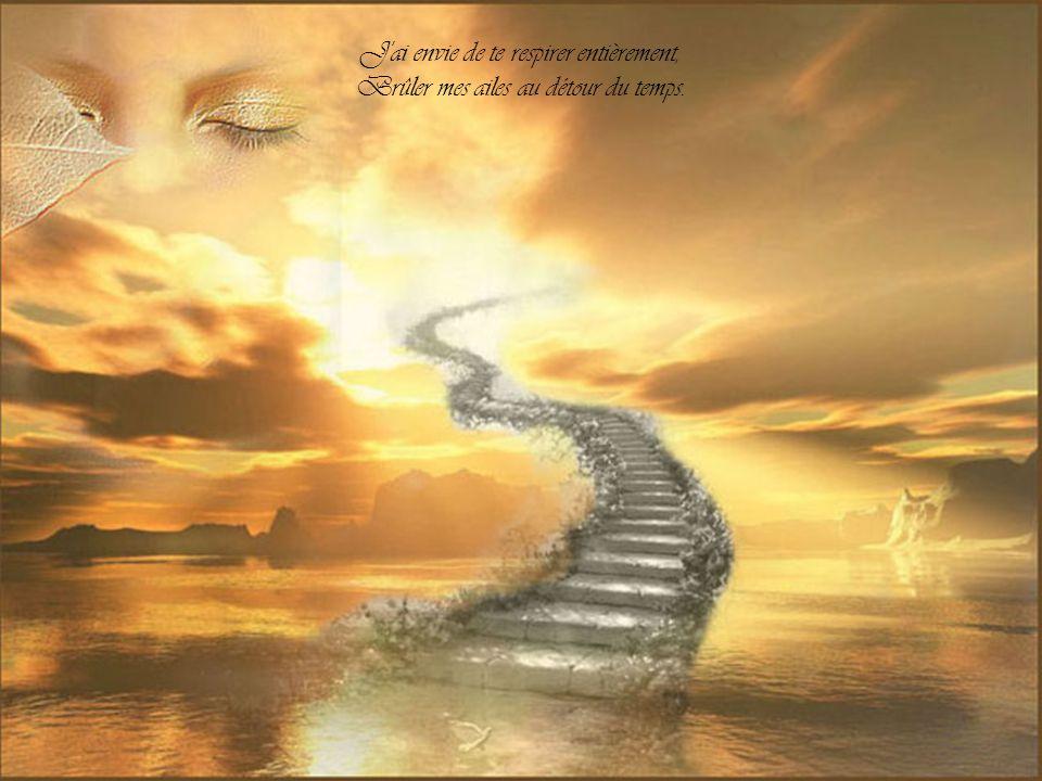 Mais tes peurs encerclent l'avenir, Alors que le présent est à ravir.
