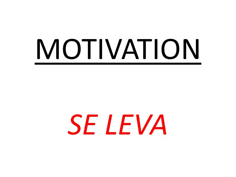 MOTIVATION SE LEVA