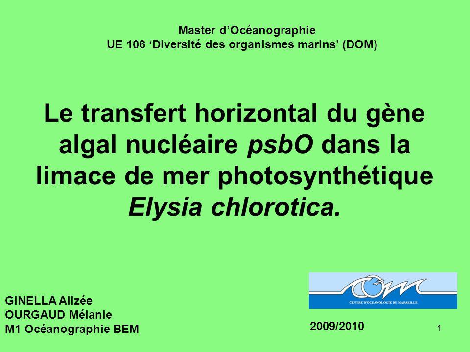 1 Le transfert horizontal du gène algal nucléaire psbO dans la limace de mer photosynthétique Elysia chlorotica.