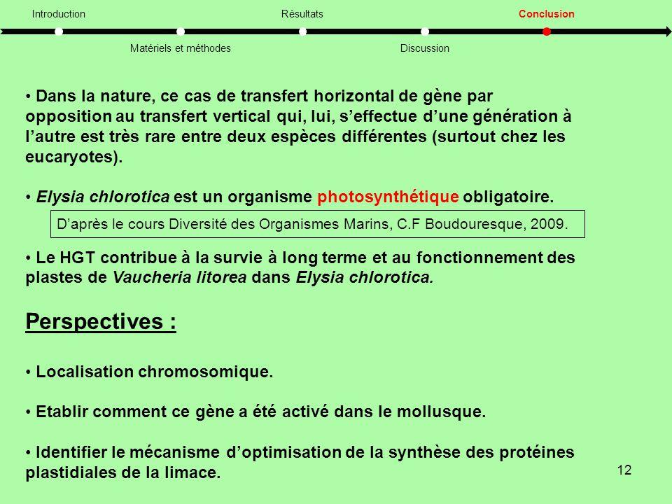 12 Introduction Matériels et méthodes Résultats Discussion Conclusion • Dans la nature, ce cas de transfert horizontal de gène par opposition au transfert vertical qui, lui, s'effectue d'une génération à l'autre est très rare entre deux espèces différentes (surtout chez les eucaryotes).