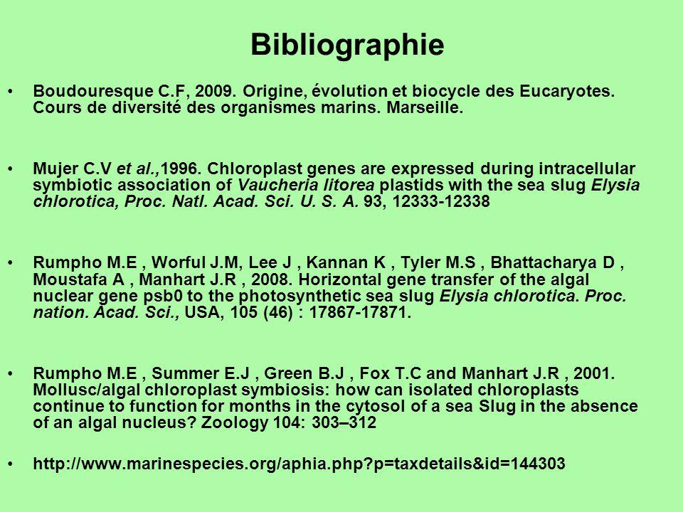 Bibliographie •Boudouresque C.F, 2009.Origine, évolution et biocycle des Eucaryotes.