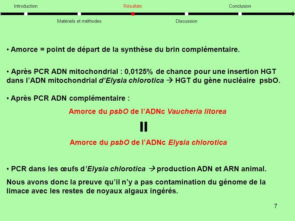7 Introduction Matériels et méthodes Résultats Discussion Conclusion • Amorce = point de départ de la synthèse du brin complémentaire.