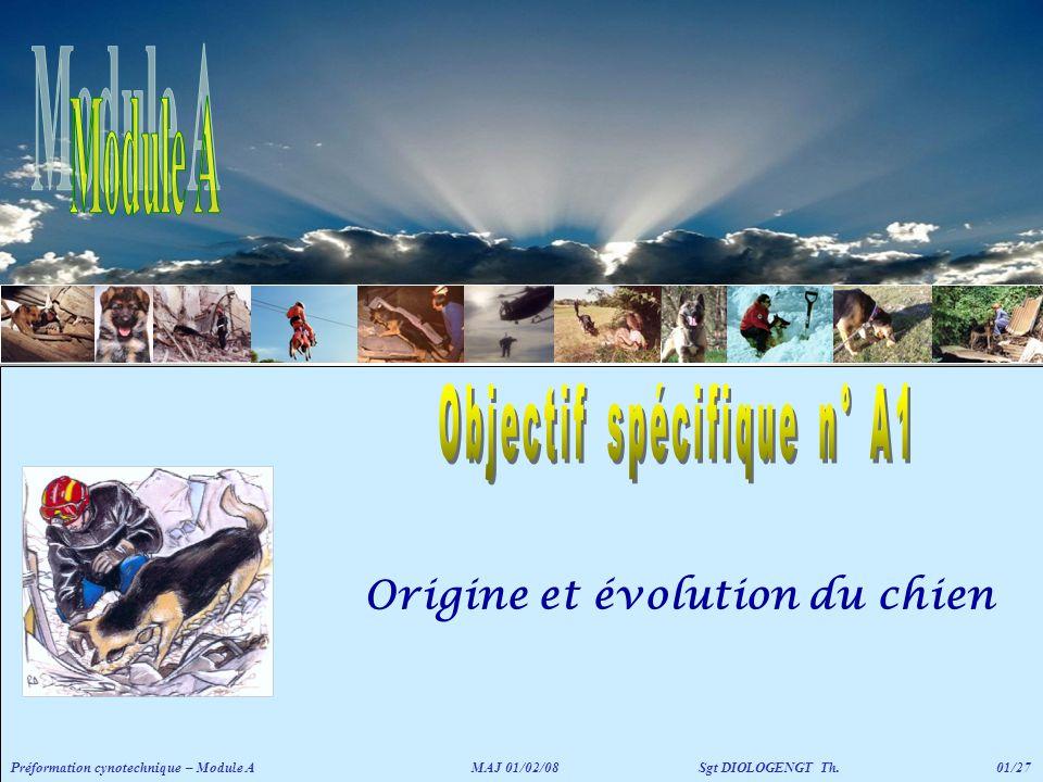 Origine et évolution du chien Préformation cynotechnique – Module A MAJ 01/02/08 Sgt DIOLOGENGT Th.