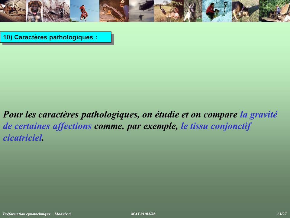 10) Caractères pathologiques : Pour les caractères pathologiques, on étudie et on compare la gravité de certaines affections comme, par exemple, le tissu conjonctif cicatriciel.
