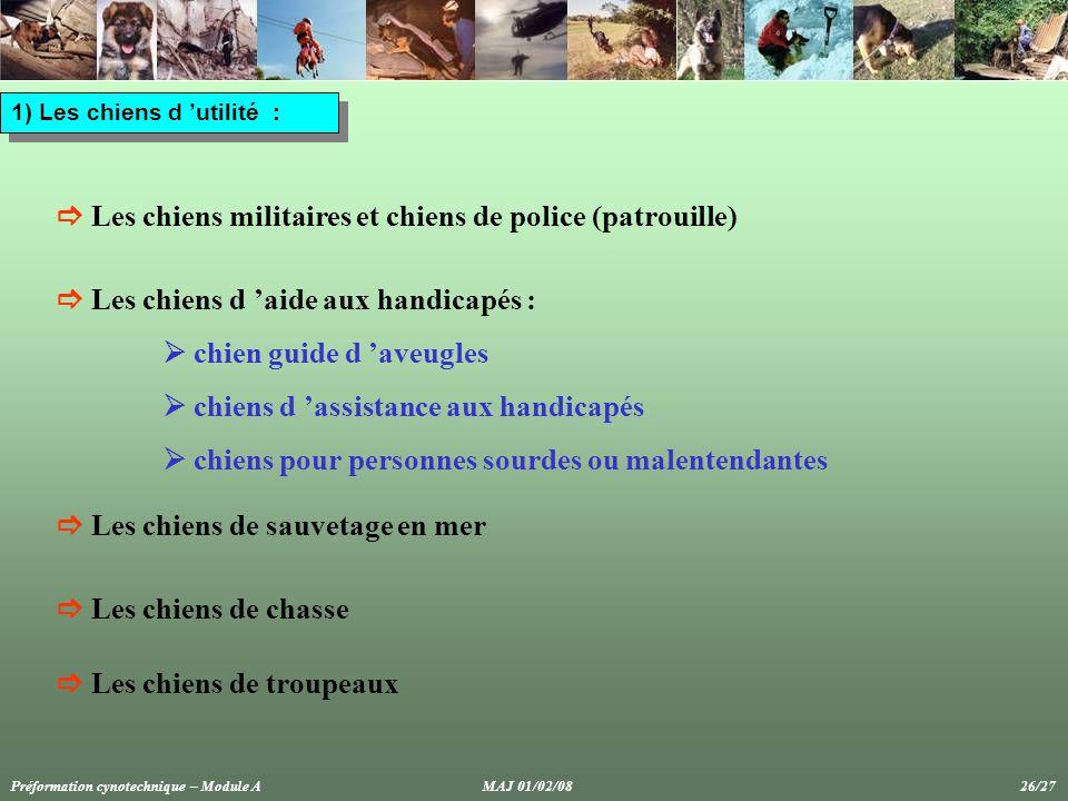 1) Les chiens d 'utilité :  Les chiens militaires et chiens de police (patrouille)  Les chiens d 'aide aux handicapés :  chien guide d 'aveugles  chiens d 'assistance aux handicapés  chiens pour personnes sourdes ou malentendantes  Les chiens de chasse  Les chiens de sauvetage en mer  Les chiens de troupeaux Préformation cynotechnique – Module A MAJ 01/02/08 26/27
