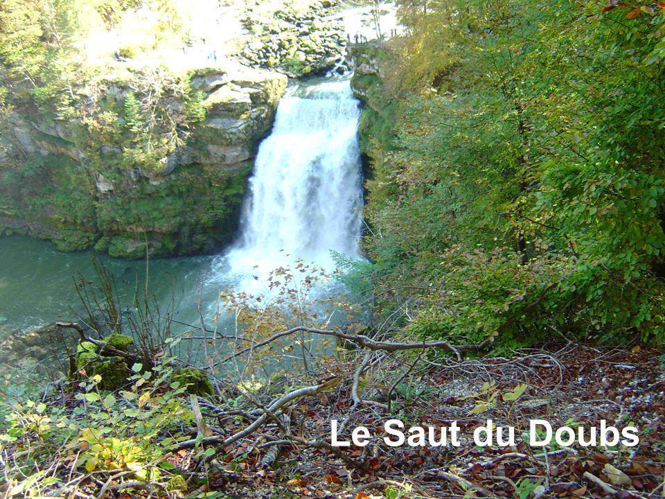 Hiver 2011 – 2012 Le Saut du Doubs et Les bassins du Doubs Le saut du Doubs au début de la période de grand froid : jusqu'à -30° à Mouthe.