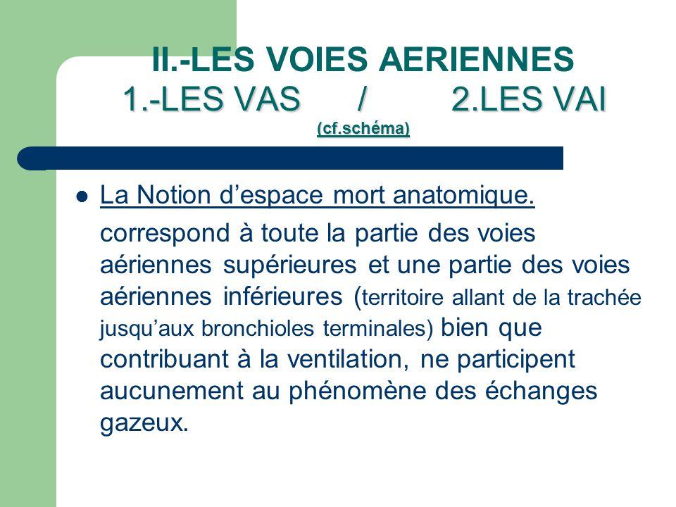1.-LES VAS / 2.LES VAI (cf.schéma) II.-LES VOIES AERIENNES 1.-LES VAS / 2.LES VAI (cf.schéma)  La Notion d'espace mort anatomique. correspond à toute