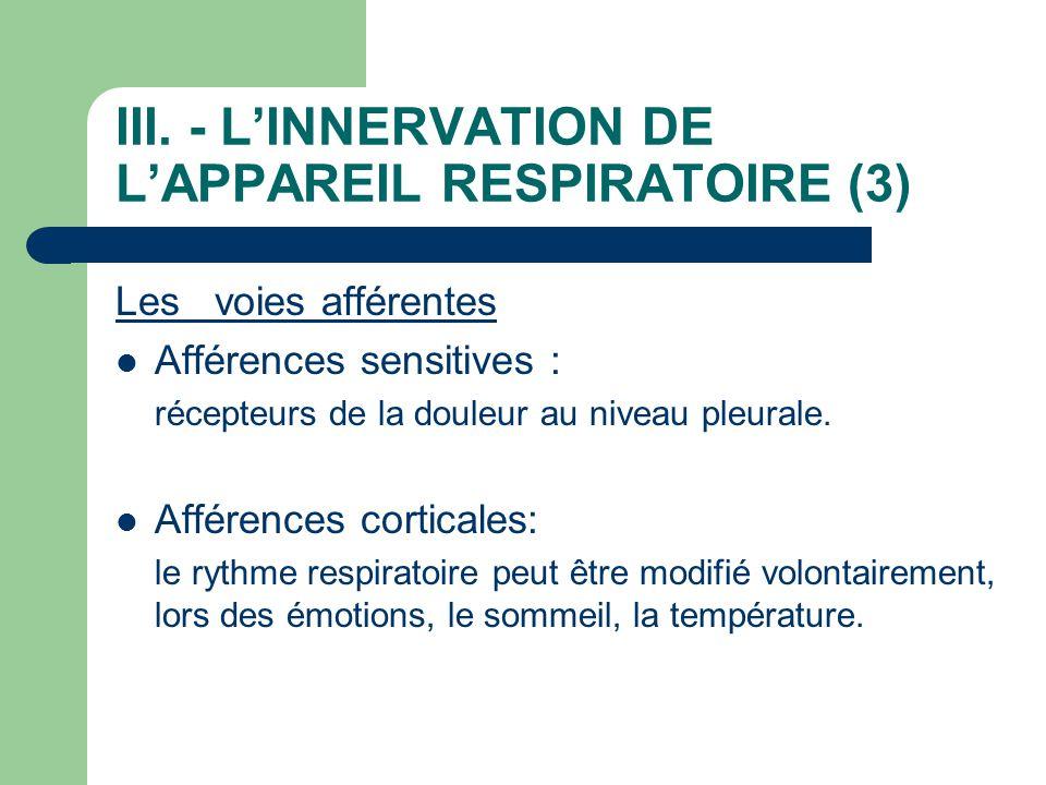 III. - L'INNERVATION DE L'APPAREIL RESPIRATOIRE (3) Les voies afférentes  Afférences sensitives : récepteurs de la douleur au niveau pleurale.  Affé