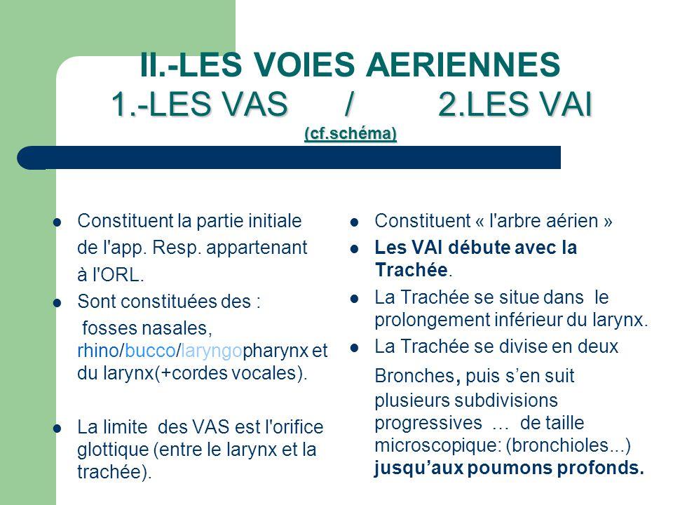 III.- LA VASCULARISATION DES POUMONS Les Poumons reçoivent une double irrigation sanguine : – 1)La circulation nutritive: qui assure les besoins nutritifs pour la vie cellulaire des différentes parties des poumons.