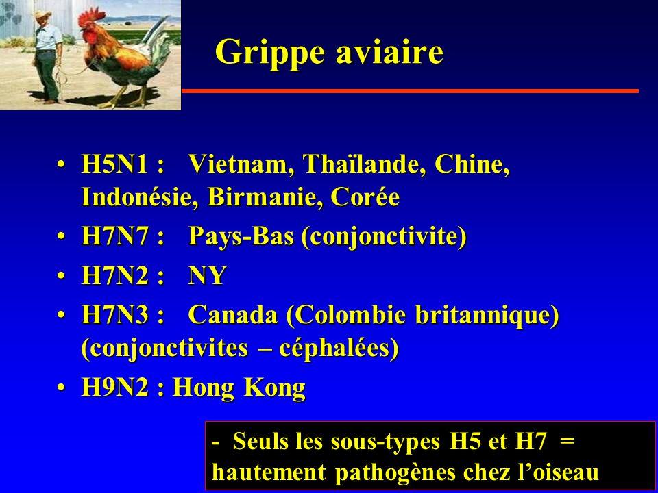 Grippe aviaire •H5N1 :Vietnam, Thaïlande, Chine, Indonésie, Birmanie, Corée •H7N7 :Pays-Bas (conjonctivite) •H7N2 :NY •H7N3 :Canada (Colombie britannique) (conjonctivites – céphalées) •H9N2 : Hong Kong - Seuls les sous-types H5 et H7 = hautement pathogènes chez l'oiseau