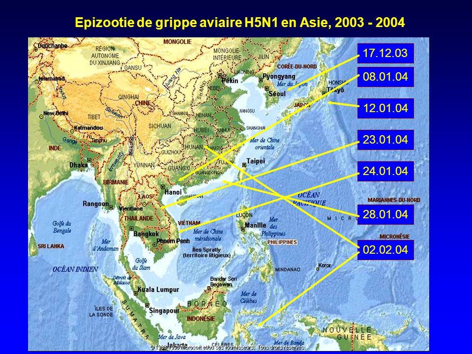 17.12.0308.01.0412.01.0423.01.0424.01.04 28.01.04 02.02.04 Epizootie de grippe aviaire H5N1 en Asie, 2003 - 2004