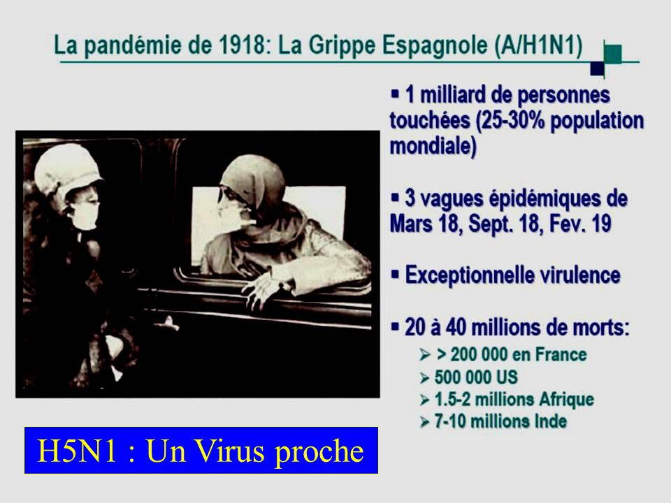 H5N1 : Un Virus proche