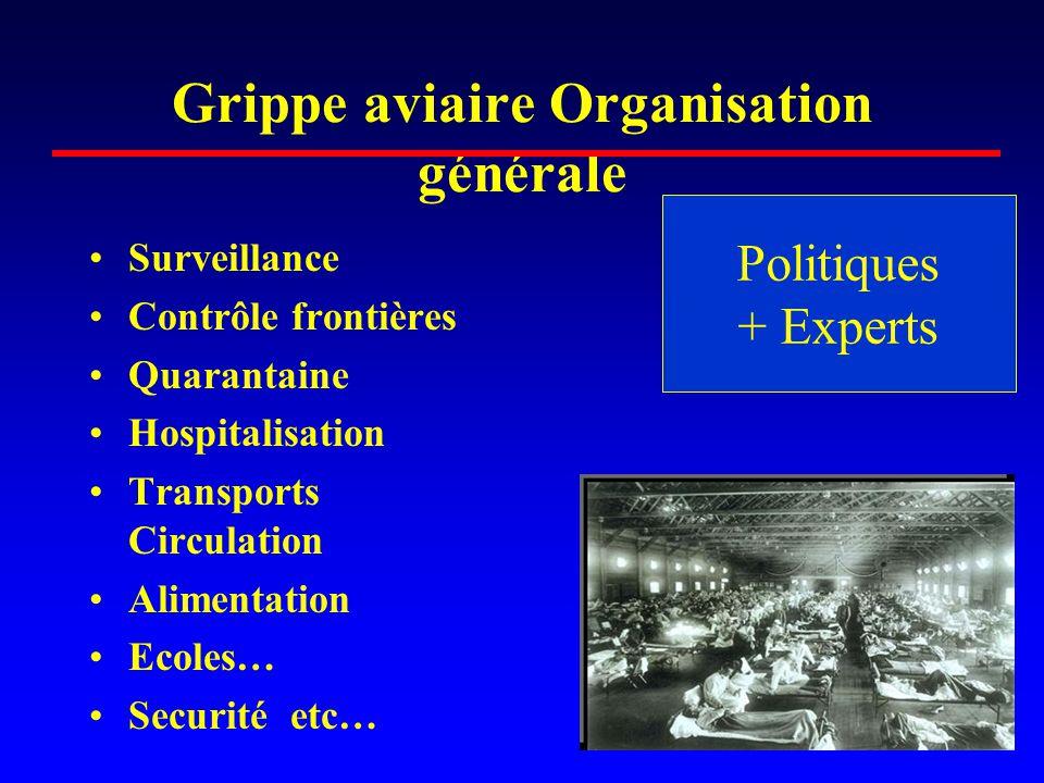 Grippe aviaire Organisation générale •Surveillance •Contrôle frontières •Quarantaine •Hospitalisation •Transports Circulation •Alimentation •Ecoles… •Securité etc… Politiques + Experts