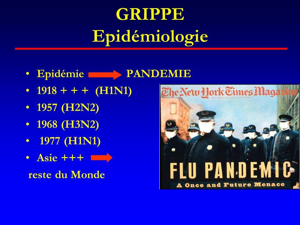 GRIPPE Epidémiologie •Epidémie PANDEMIE •1918 + + + (H1N1) •1957 (H2N2) •1968 (H3N2) • 1977 (H1N1) •Asie +++ reste du Monde