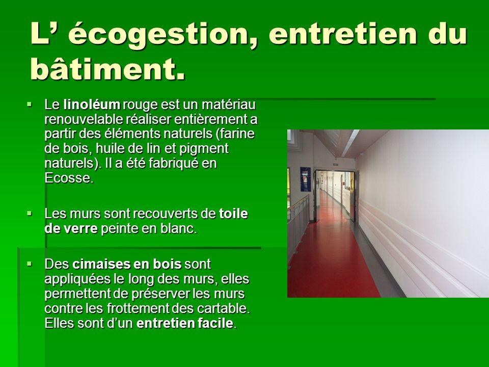 L' écogestion, entretien du bâtiment.  Le linoléum rouge est un matériau renouvelable réaliser entièrement a partir des éléments naturels (farine de