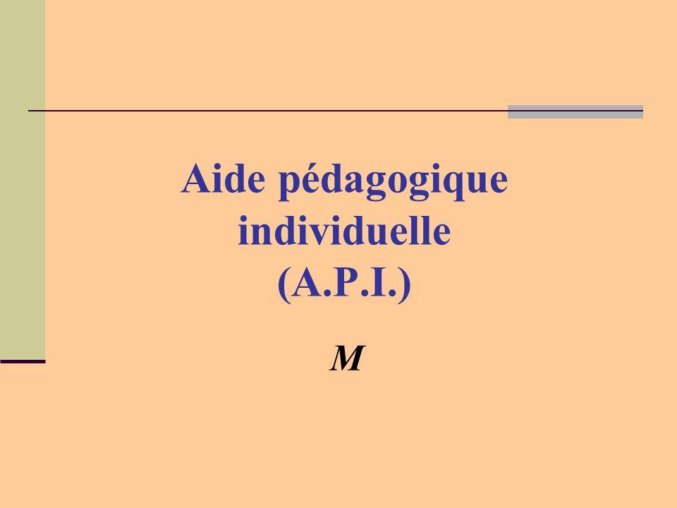 M Aide pédagogique individuelle (A.P.I.)