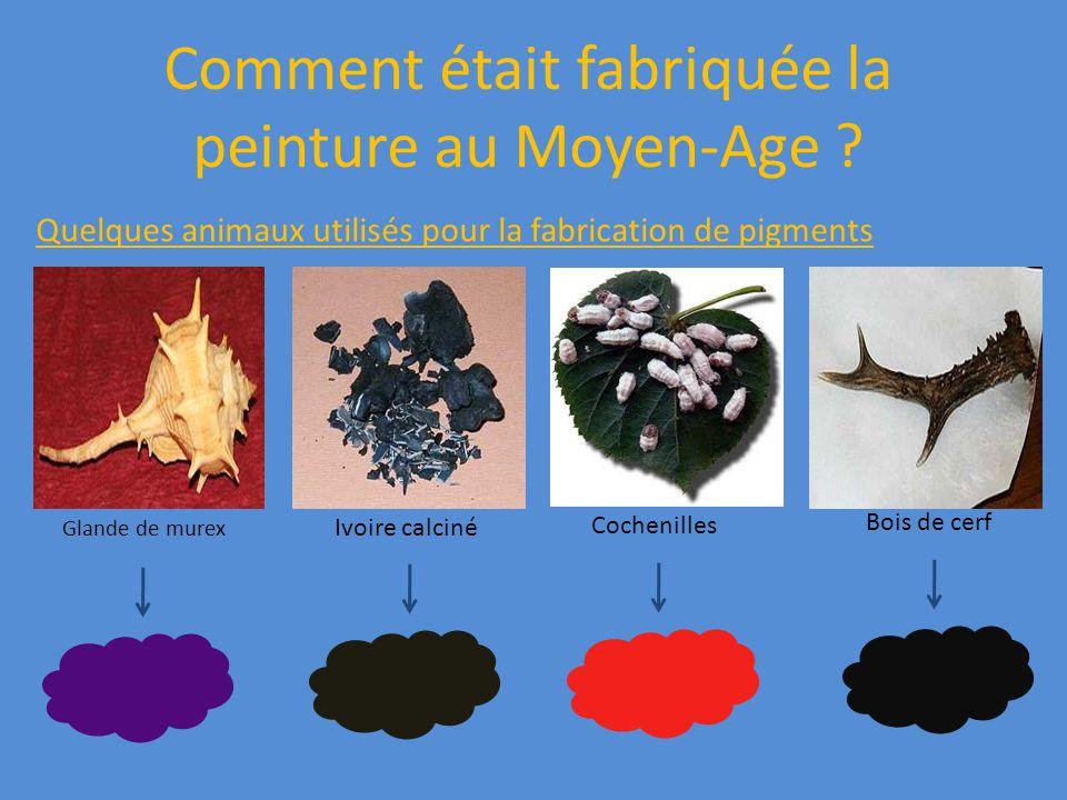 Comment était fabriquée la peinture au Moyen-Age ? Quelques animaux utilisés pour la fabrication de pigments Glande de murex Ivoire calciné Cochenille